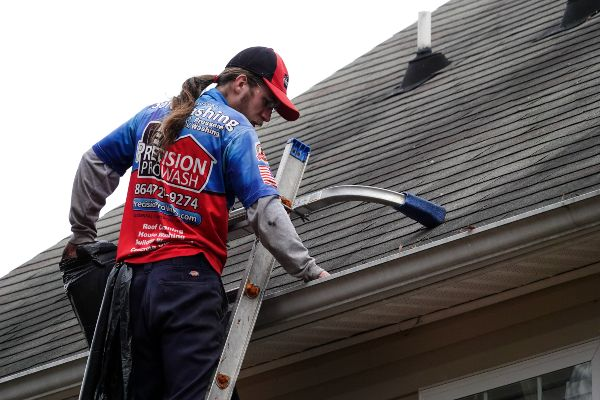 Gutter cleaning. During the service.