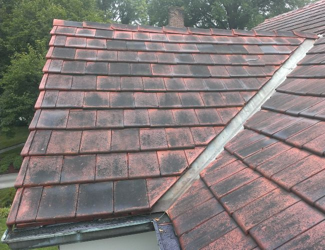 Up close of dirty shingles before a soft roof washing service.