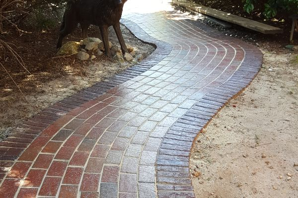 Concrete walkway with a fresh coat of sealer.
