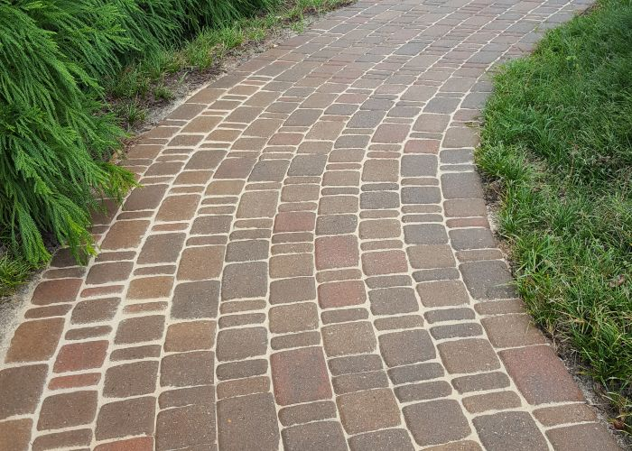 Paver cleaning and re-sanding on a residential walkway.