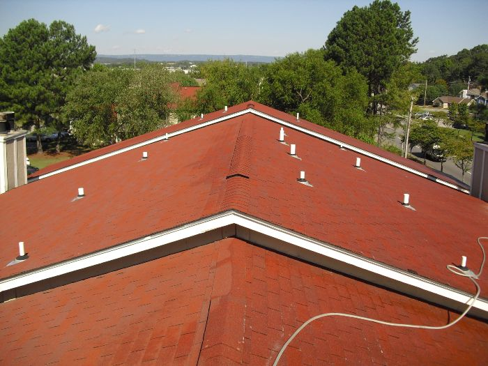 A clean and fresh roof during roof cleaning services.