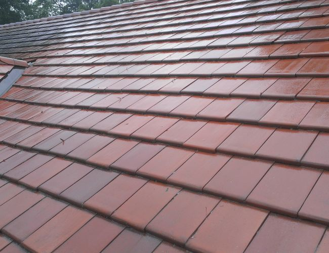 Up close look at a fresh roof cleaning on a home.
