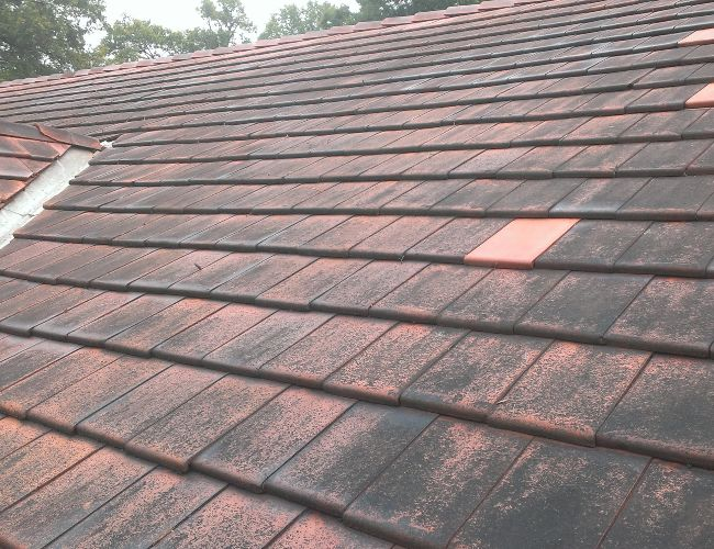 Up close view at a dirty roof. Keep your roof protected with regular cleaning.