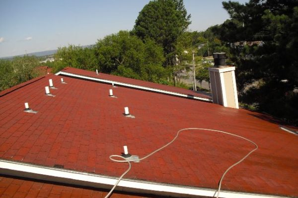Cleaned and like-new roof after a roof washing service